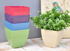 Colored Plastic Flower Pot for Greenhouse-Jianchuan