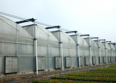 Expert Advice On Vegetable PC Greenhouse-Bozong