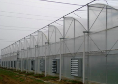 Vegetable PC Greenhouse-Bozong Greenhouse