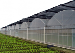 Indoor|Outdoor Vegetable Greenhouse For Sale!