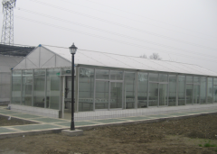 Best Price Scientific Research Greenhouse-Jianchuan