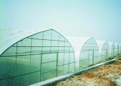 Polytunnel|Tunnel Greenhouse For Sale-Jianchuan Greenhouse