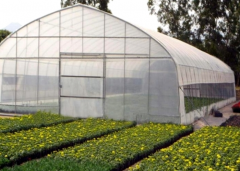 Cheap And High Quality Poly Tunnel Greenhouse-Jianchuan