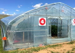Polytunnel Greenhouse-Jianchuan Greenhouse