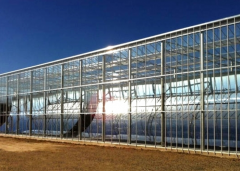 Commercial Glass Greenhouse kits-Bozong Greenhouse