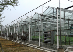 Glass Greenhouse With greenhouse spares-Bozong Greenhouse