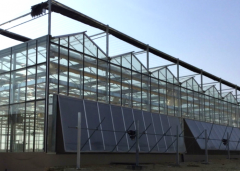 Hot Sale Glass Greenhouse for Agriculture-Bozong