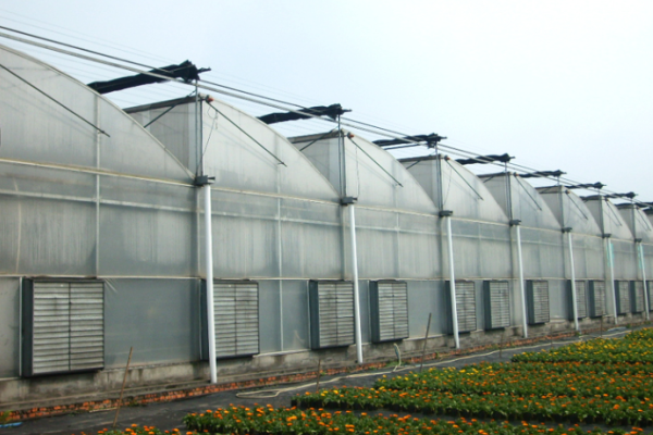 The Sawtooth Greenhouse