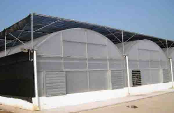 plastic film greenhouse with External Sun-Shade System