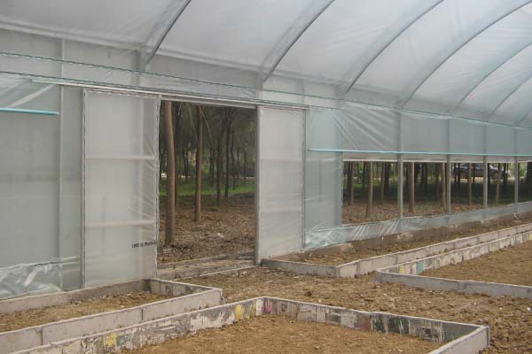 single span greenhouse