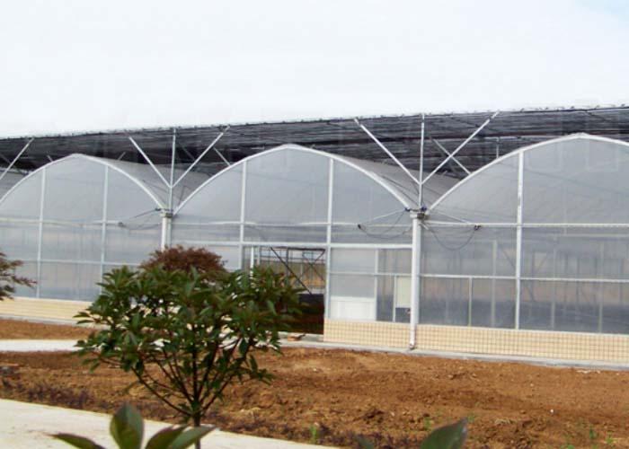 Film Greenhouse
