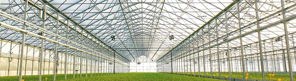 2016 New Hot Dip Galvanized Pipe Glass Greenhouse For Sale!