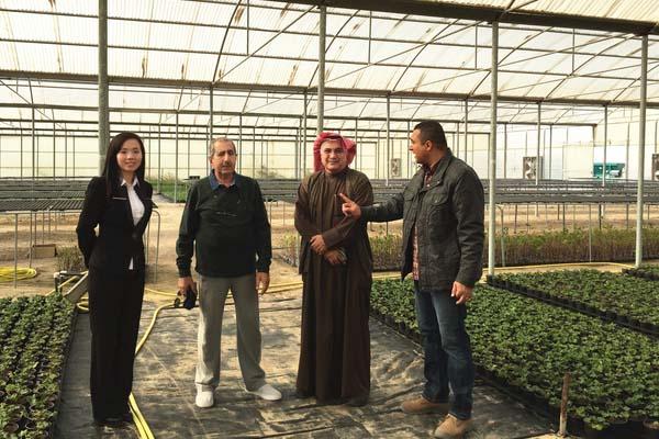 Customer Visiting JC Polycarbonate Greenhouse