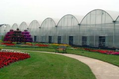 Flower House Greenhouse For Sale-Jianchuan Greenhouse