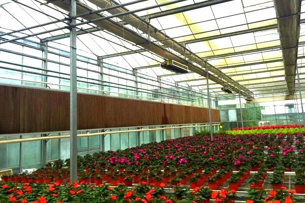 flower greenhouse with cooling system