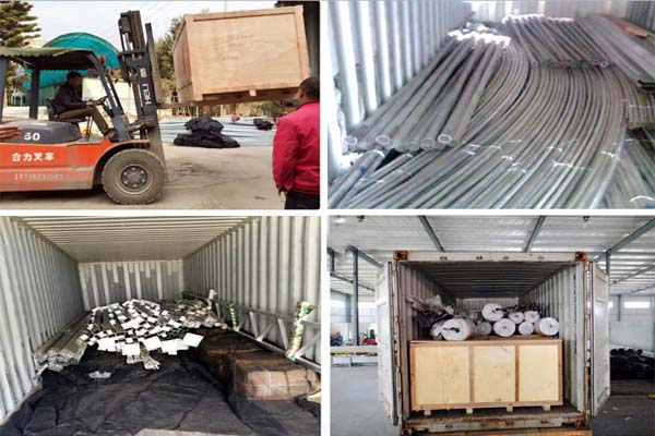 Plastic Film Sawtooth Greenhouse For Package
