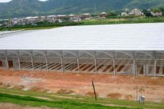 Film Covered Sawtooth Greenhouse for Vegetable