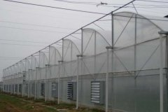 High Tunnel PC Covered Sawtooth Greenhouse for Sale